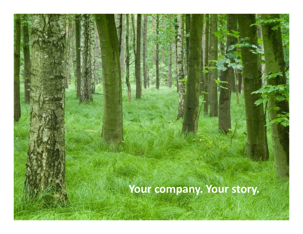 Your company Your story Your company. Your stor...