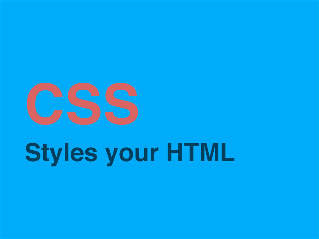 CSS! Styles your HTML!