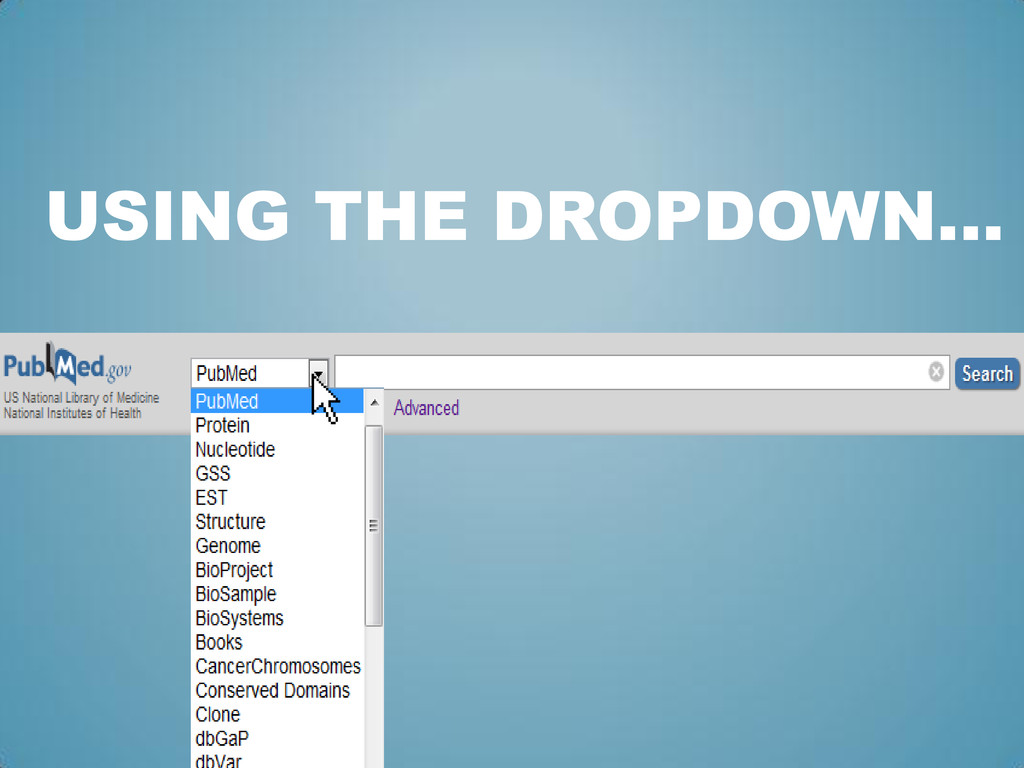 USING THE DROPDOWN…