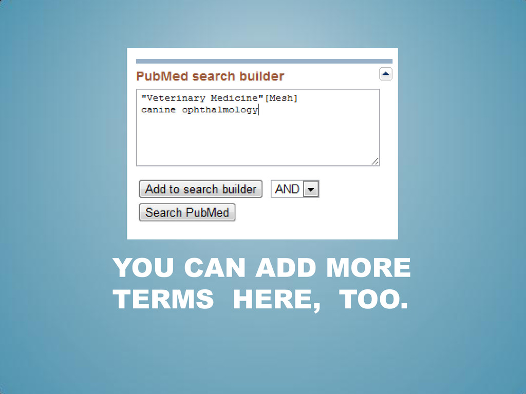 YOU CAN ADD MORE TERMS HERE, TOO.