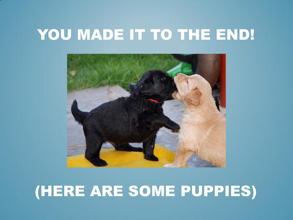 YOU MADE IT TO THE END! (HERE ARE SOME PUPPIES)