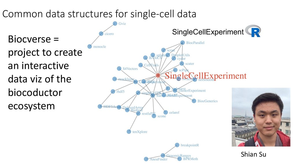 Common data structures for single-cell data Bio...