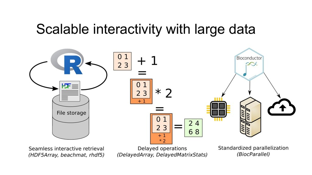 Scalable interactivity with large data