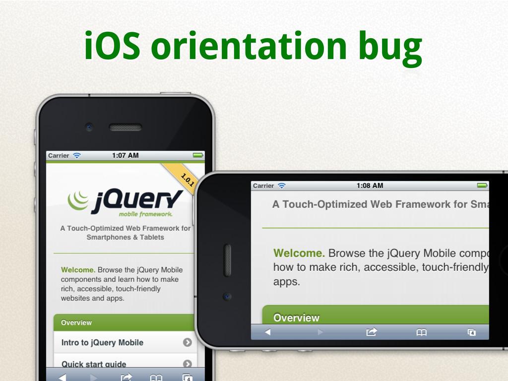 iOS orientation bug