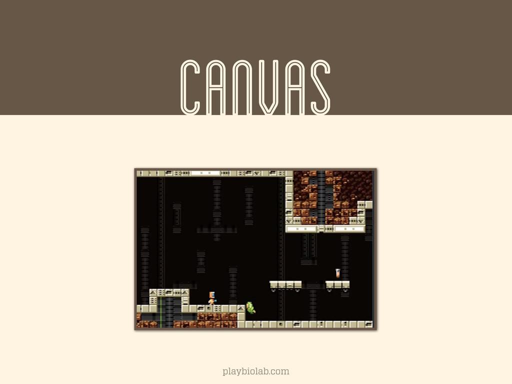 CANVAS playbiolab.com