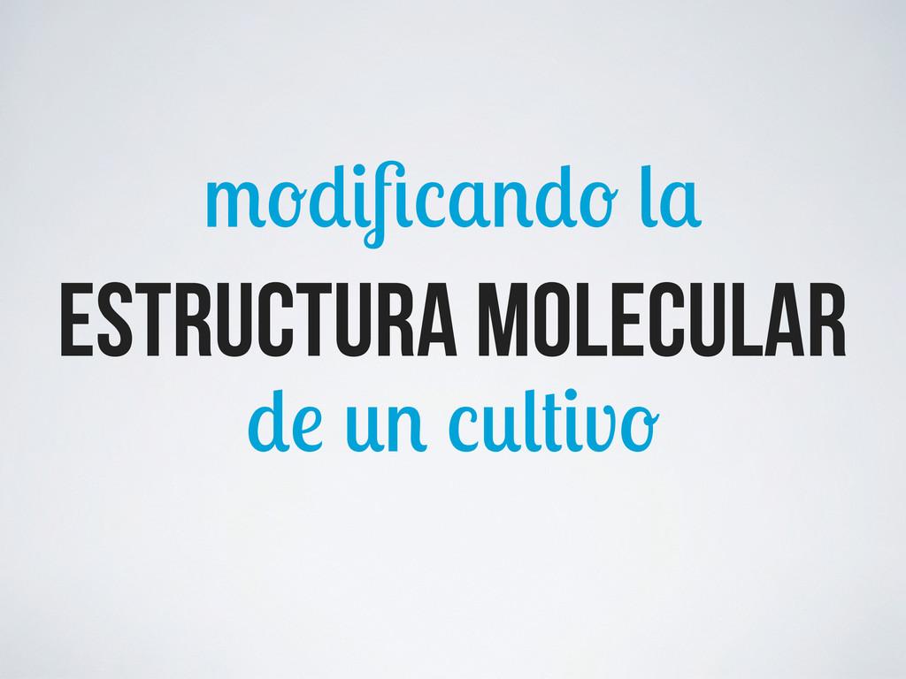 v estructura molecular