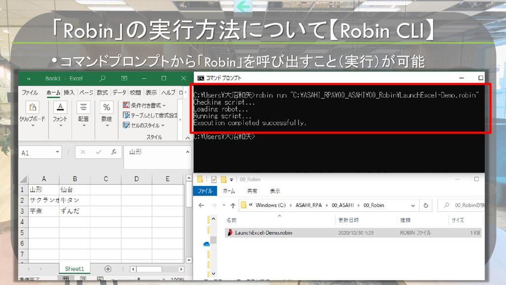 「Robin」の実行方法について【Robin CLI】 • コマンドプロンプトから「Robin...