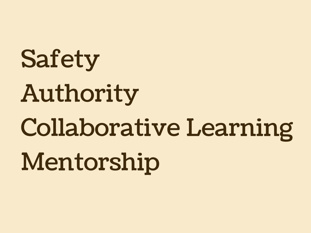 Safety Authority Collaborative Learning Mentors...