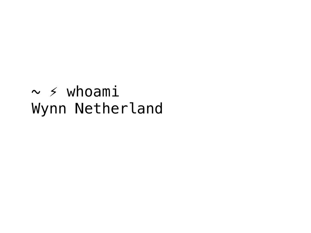 ~ ⚡ whoami Wynn Netherland