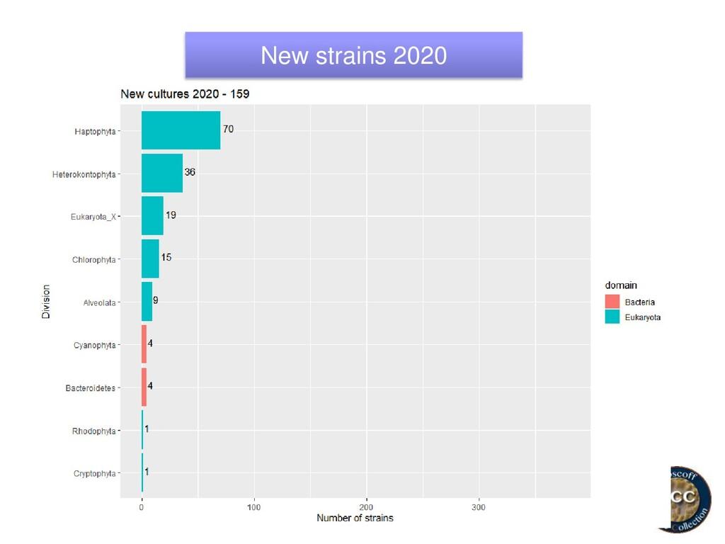 New strains 2020