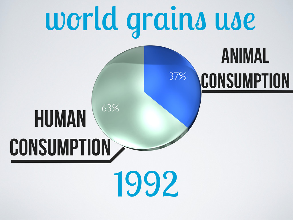 w r r 1992 37% 63% Human consumption animal con...