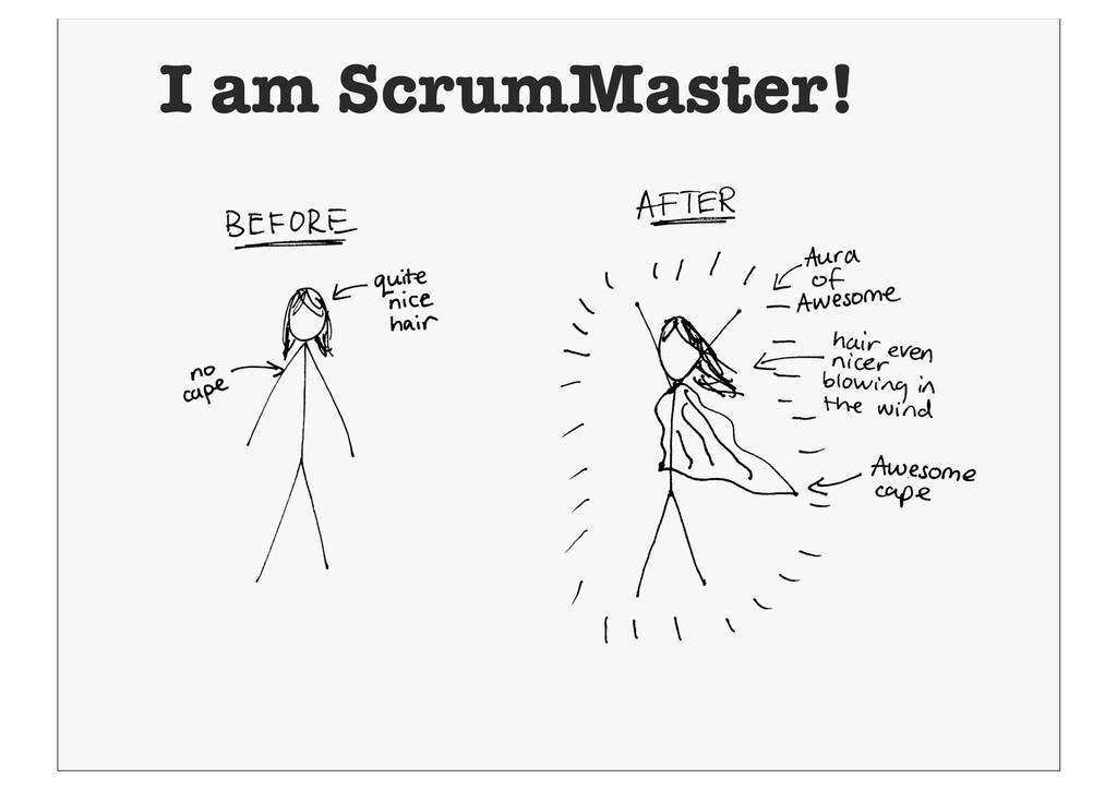 I am ScrumMaster!