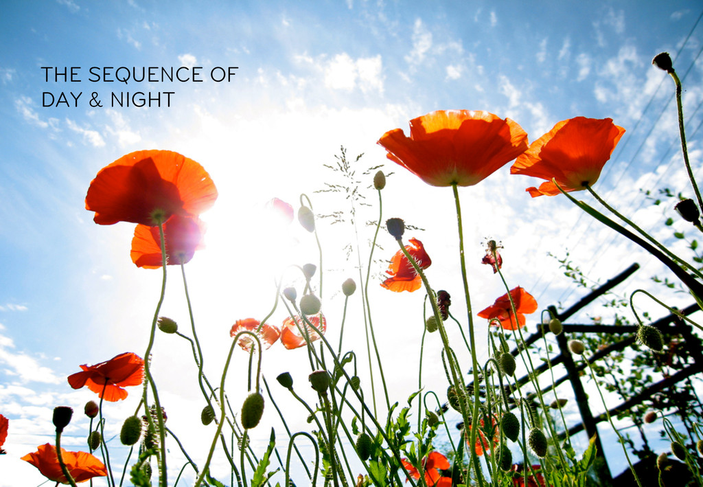 THE SEQUENCE OF DAY & NIGHT