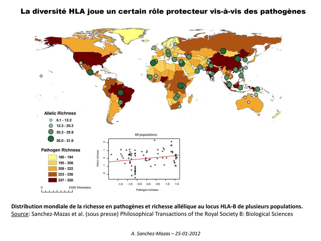 La diversité HLA joue un certain rôle protecteu...