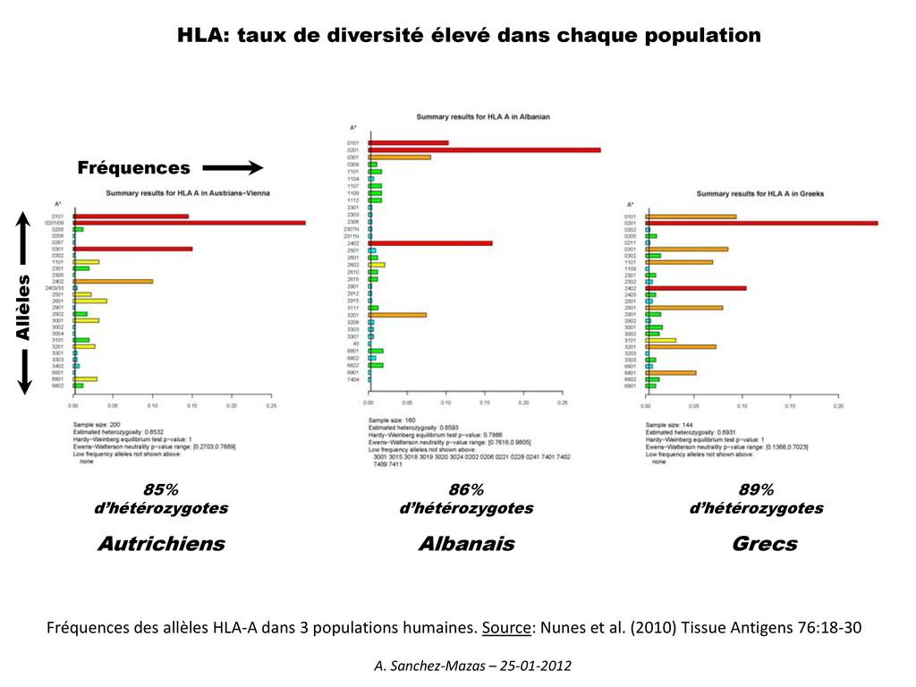 HLA: taux de diversité élevé dans chaque popula...