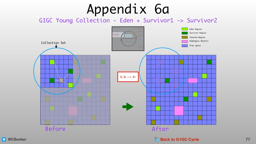 @CGuntur Appendix 6a 77 G1GC Young Collection -...