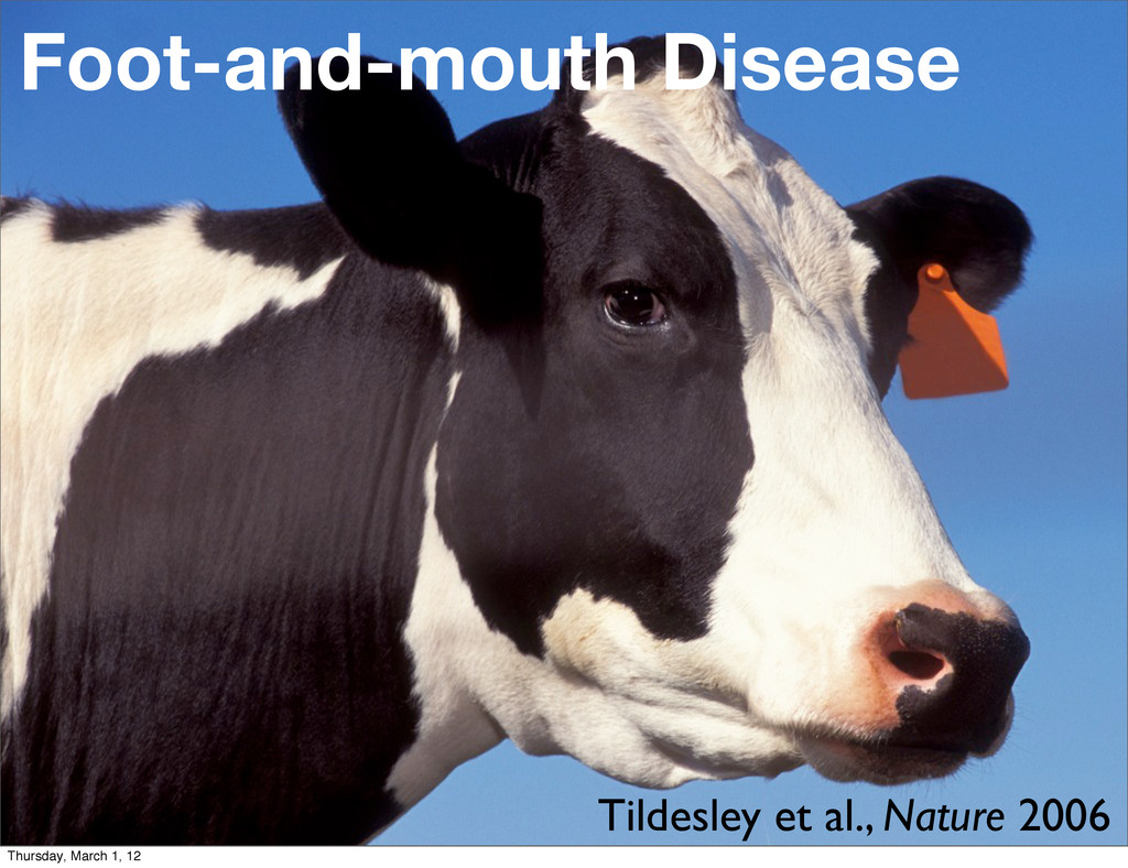Foot-and-mouth Disease Tildesley et al., Nature...