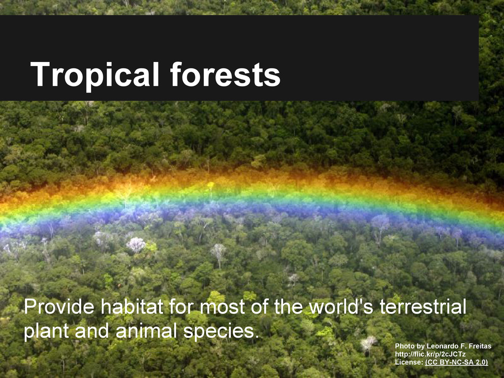 Tropical forests Provide habitat for most of th...