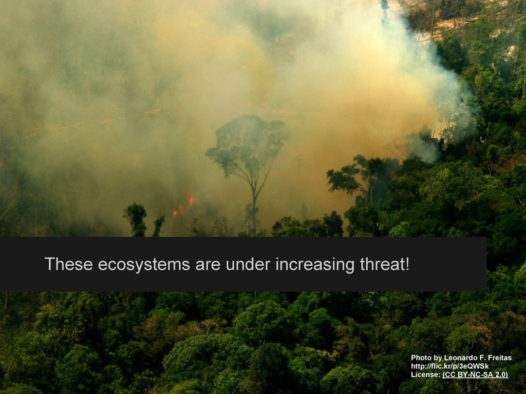 These ecosystems are under increasing threat! P...