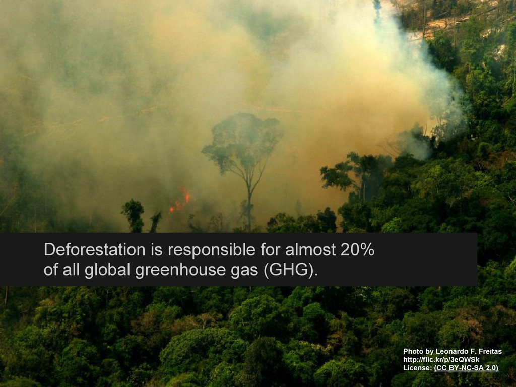 Deforestation is responsible for almost 20% of ...