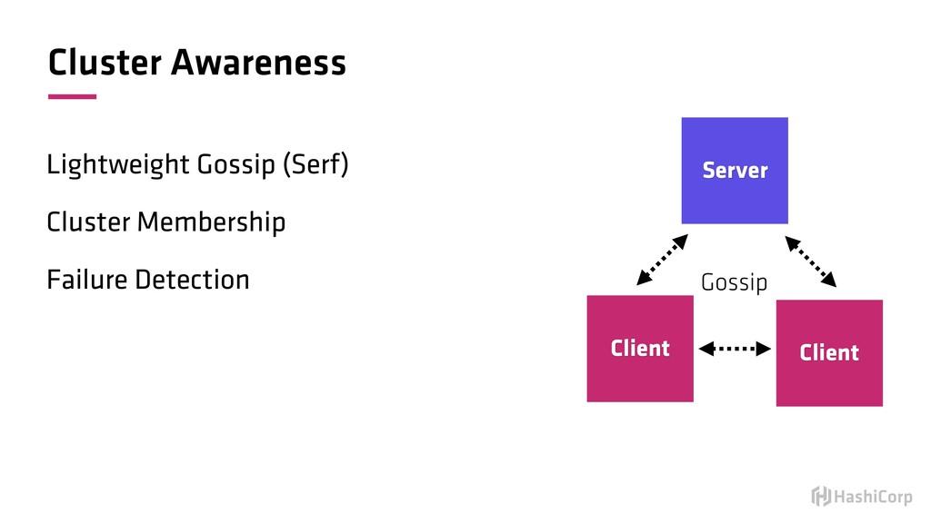 Cluster Awareness Lightweight Gossip (Serf) Clu...