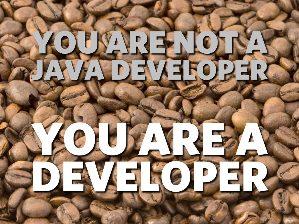 YOU ARE NOT A JAVA DEVELOPER YOU ARE A DEVELOPER