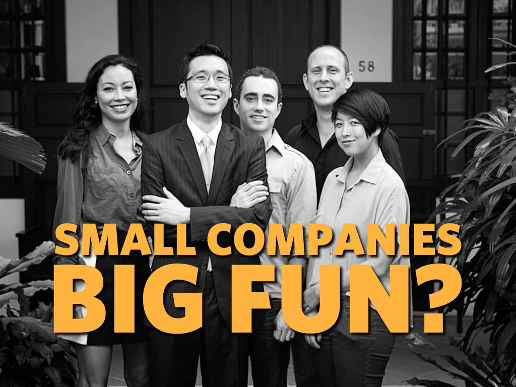 SMALL COMPANIES BIG FUN?