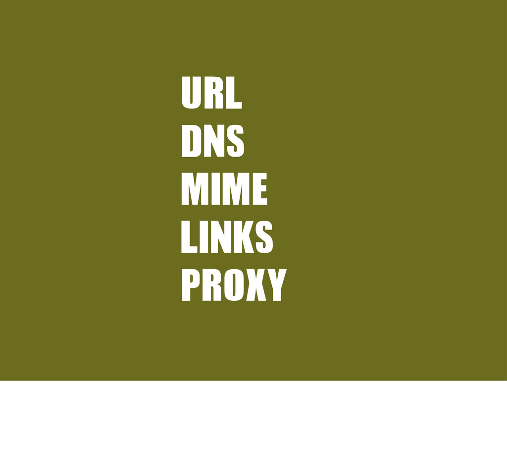 URL	  DNS MIME LINKS PROXY