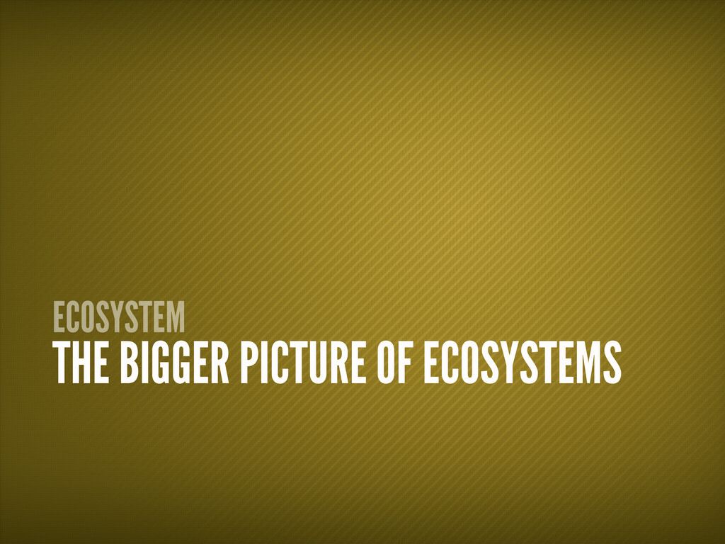 ECOSYSTEM THE BIGGER PICTURE OF ECOSYSTEMS