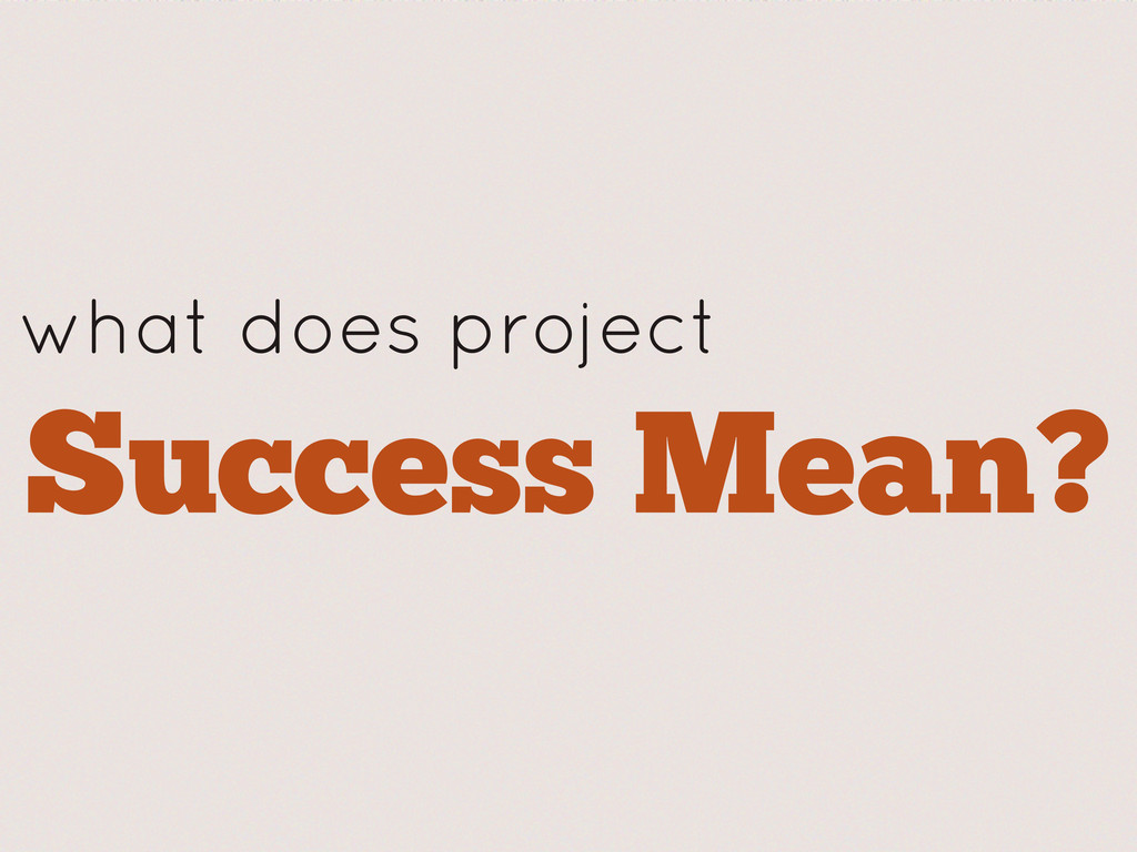 what does project Success Mean?