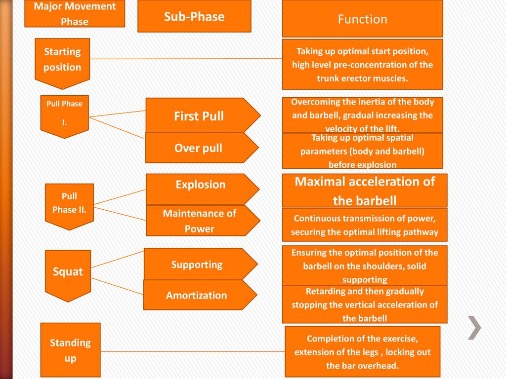 Major Movement Phase Sub-Phase Function Startin...