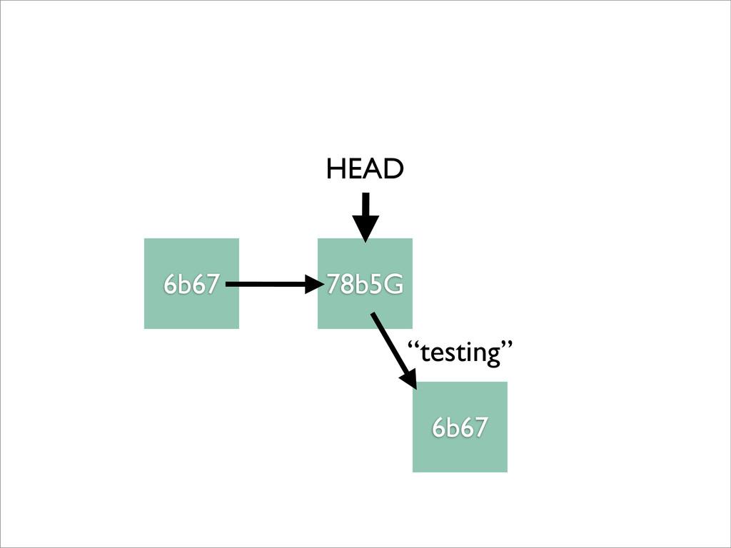 """6b67 78b5G HEAD """"testing"""" 6b67"""