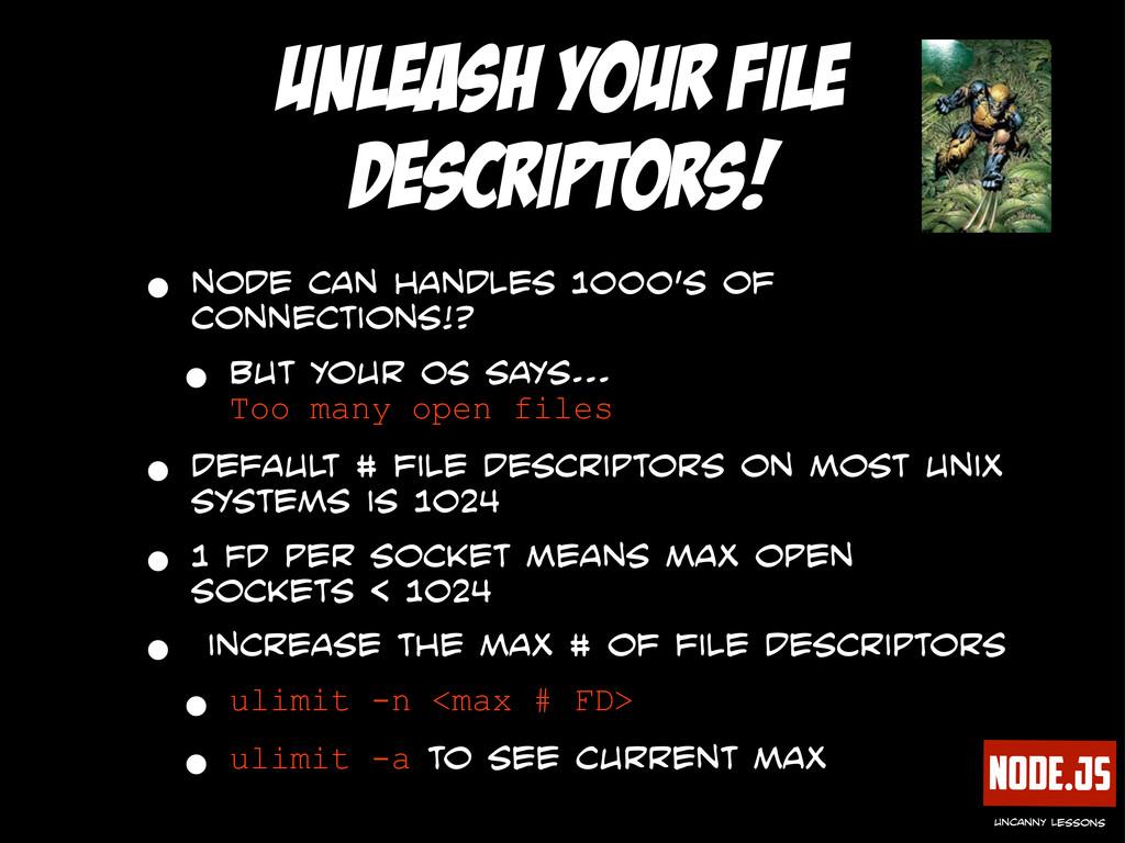 Node.js uncanny lessons unleash your file descr...