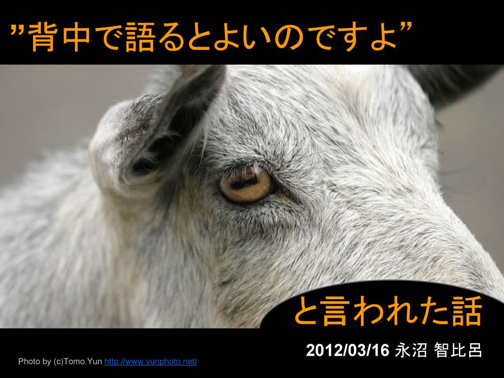 """""""背中で語るとよいのですよ"""" と言われた話 2012/03/16 永沼 智比呂 Photo b..."""