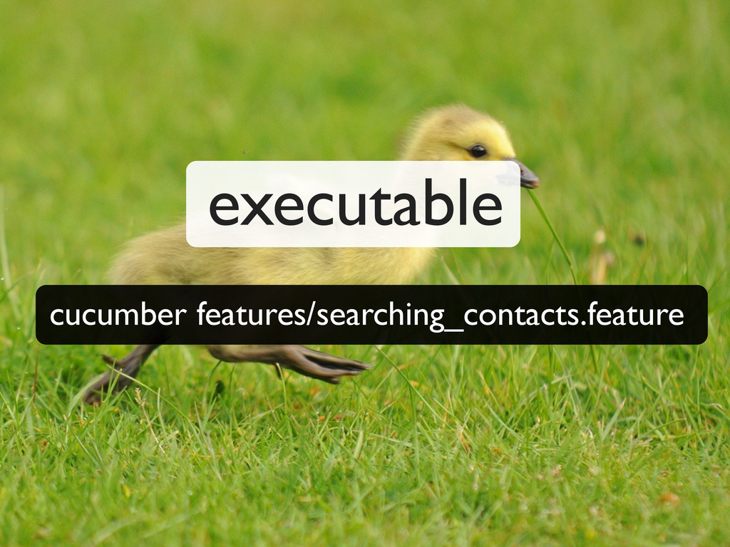 cucumber features/searching_contacts.feature ex...