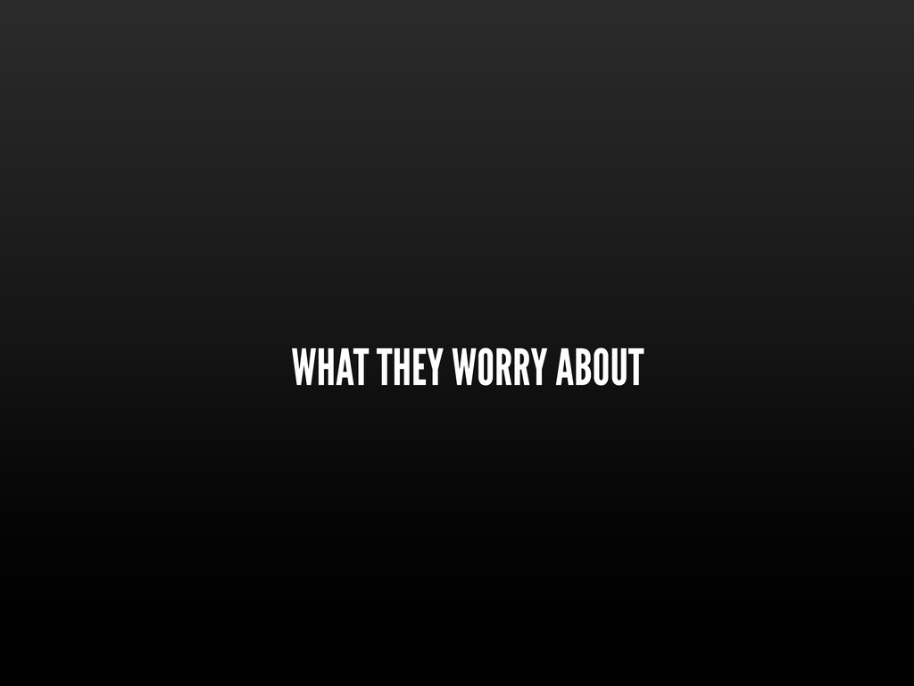 WHAT THEY WORRY ABOUT