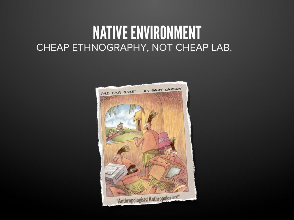 NATIVE ENVIRONMENT CHEAP ETHNOGRAPHY, NOT CHEAP...