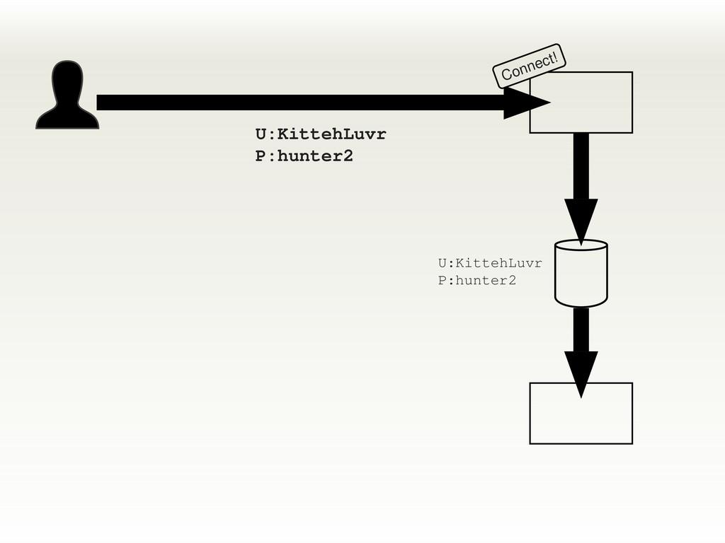 Connect! U:KittehLuvr P:hunter2 U:KittehLuvr P:...