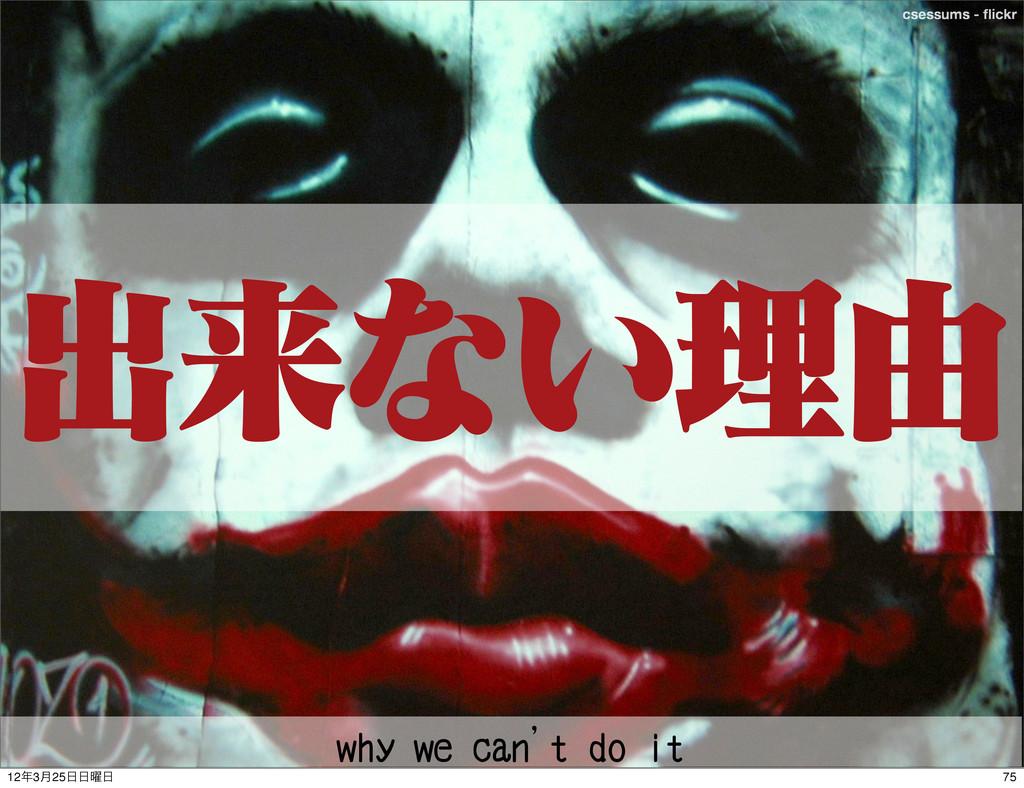 ςΩετ csessums - flickr ग़དྷͳ͍ཧ༝ why we can't do it...