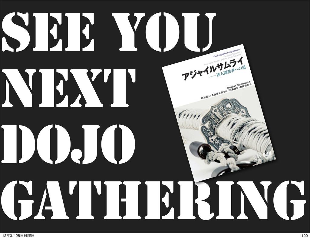 See You Next Dojo Gathering 100 123݄25༵