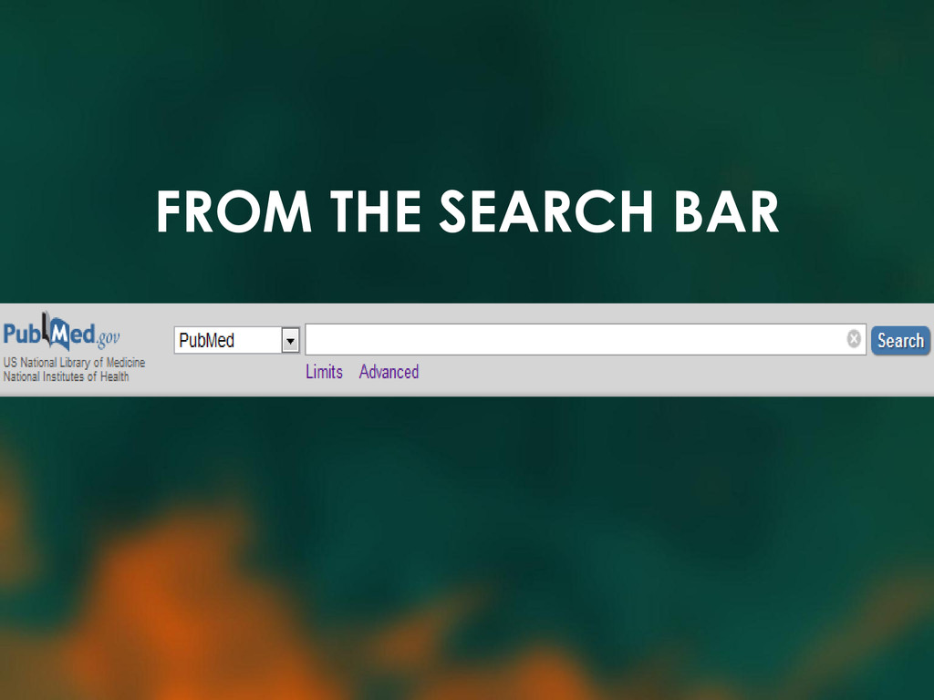 FROM THE SEARCH BAR