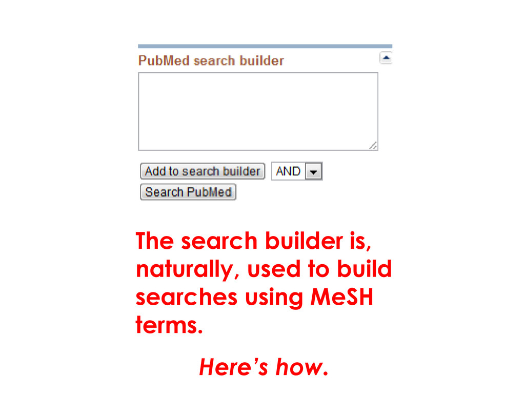 The search builder is, naturally, used to build...