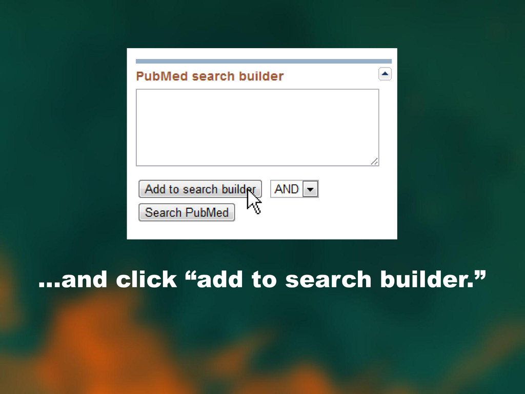 """…and click """"add to search builder."""""""