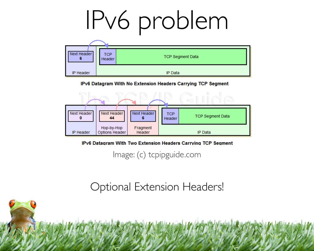 Optional Extension Headers! Image: (c) tcpipgui...