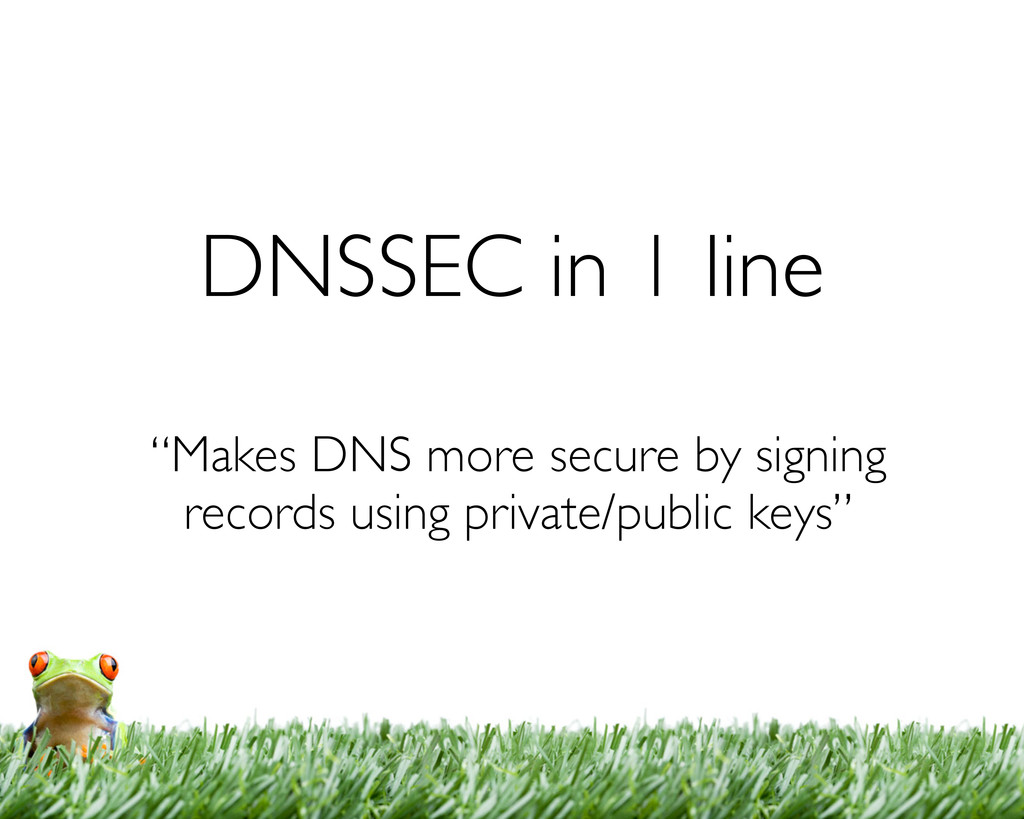 """DNSSEC in 1 line """"Makes DNS more secure by sign..."""