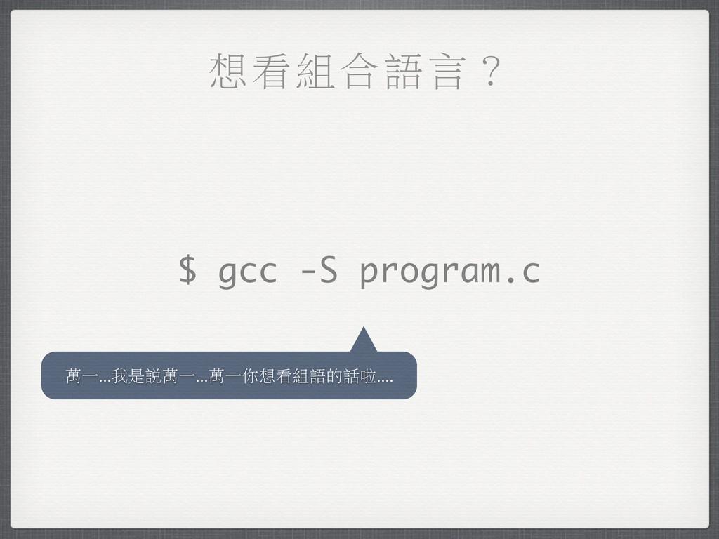 ซଡ଼ΥႧԊk $ gcc -S program.c ຬɓ...Ң݊Ⴍຬɓ...ຬɓЫซଡ଼Ⴇ...