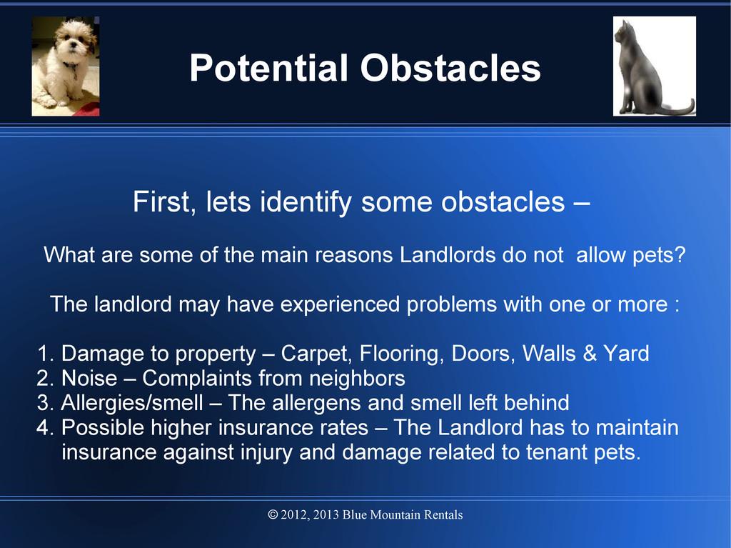 2012, 2013 Blue Mountain Rentals  Potential Ob...