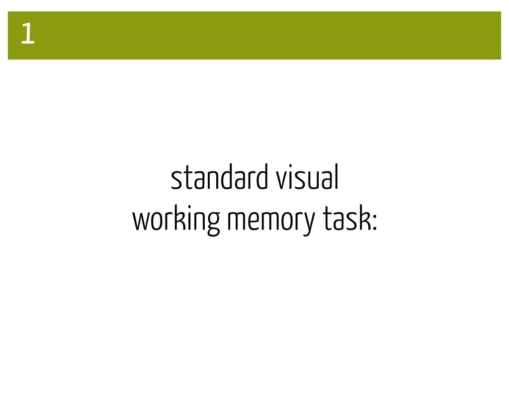 1 standard visual working memory task: