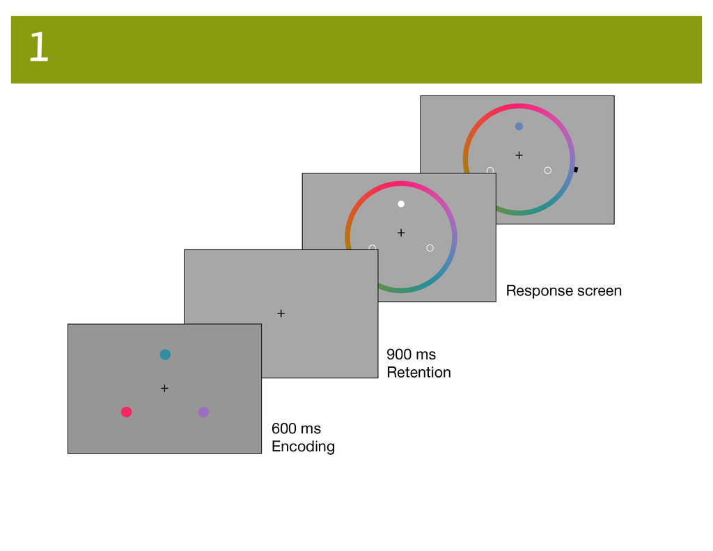600 ms Encoding 900 ms Retention Response scree...