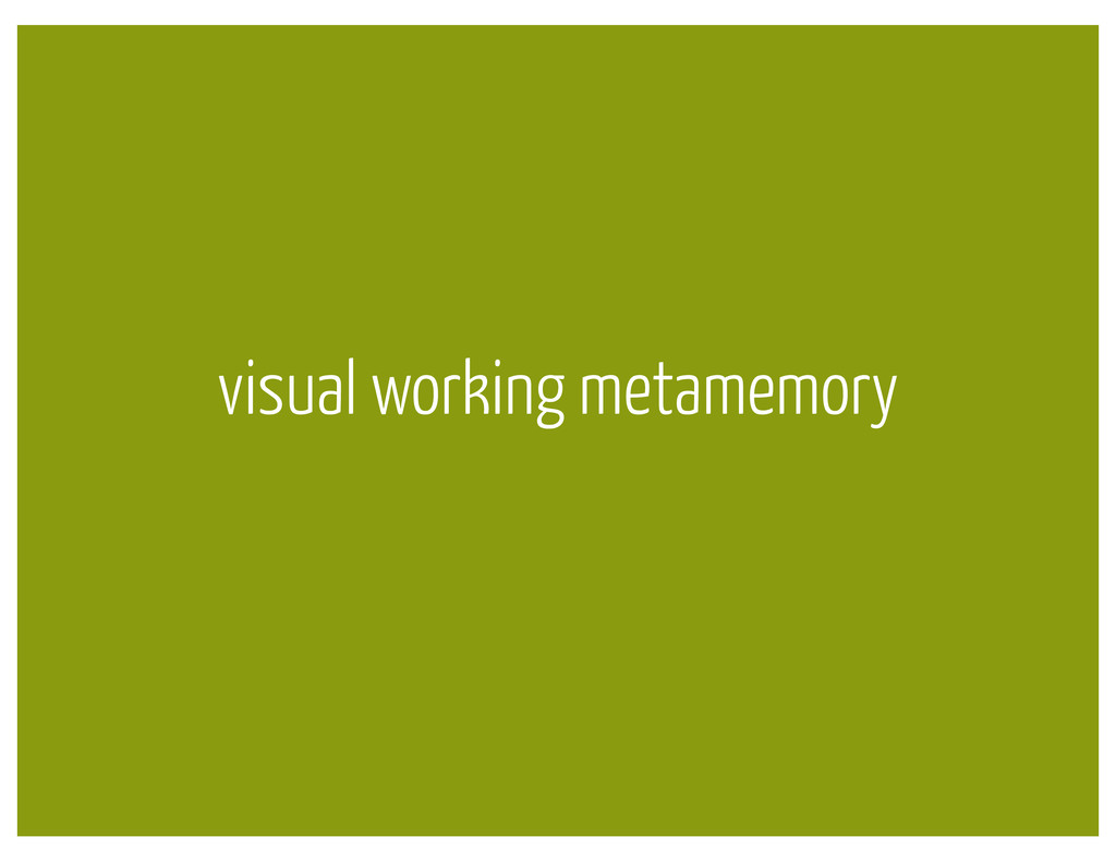 visual working metamemory